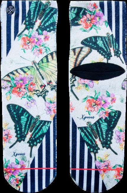 Mehrfarbige/Bunte XPOOOS Socken ABIGAL  - large