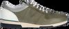 Grüne VAN LIER Sneaker low POSITANO  - small