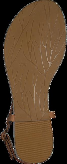 cognac MALUO shoe 4876  - large