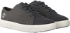 Graue TIMBERLAND Sneaker low AMHERST FLEXI KNIT OX  - small