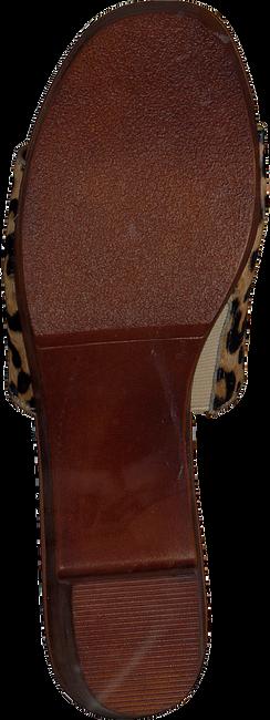 Schwarze STEVE MADDEN Sneaker FRAN  - large