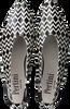 Schwarze PERTINI Pumps 15839  - small