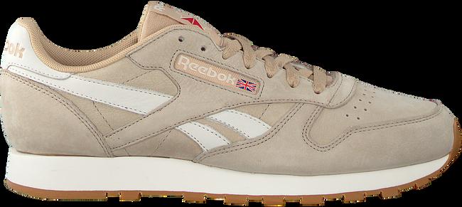 Beige REEBOK Sneaker CL LEATHER TL MEN - large