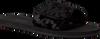 Schwarze MICHAEL KORS Zehentrenner MK SLIDE - small