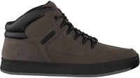 Graue TIMBERLAND Sneaker DAVIS SQUARE HIKER  - medium