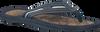 Blaue MCGREGOR Zehentrenner LONGBEACH - small