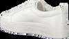 Weiße CALVIN KLEIN Sneaker JAELEE  - small