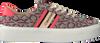 Rosane CALVIN KLEIN Sneaker low JINJER  - small