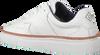 Weiße GANT Sneaker low MC JULIEN  - small