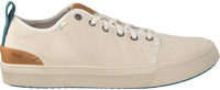 Beige TOMS Sneaker TRVL LITE LOW MEN  - medium