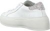 Weiße P448 Sneaker low LOUISE  - small