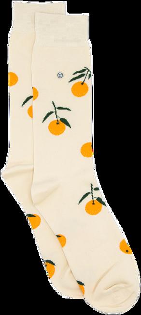 Weiße Alfredo Gonzales Socken TOUCAN  - large