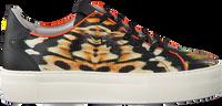 Orangene FLORIS VAN BOMMEL Sneaker low 85297  - medium