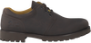 brown PANAMA JACK shoe BASICO  - small
