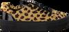 Beige BRAQEEZ Sneaker DEMI DREAM  - small