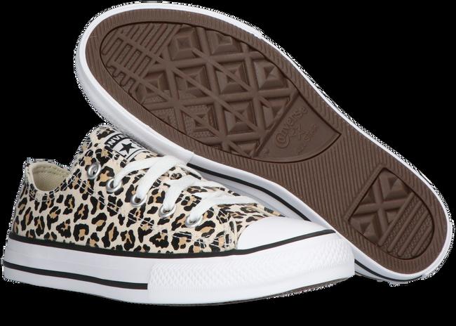 Beige CONVERSE Sneaker CHUCK TAYLOR OX KIDS  - large