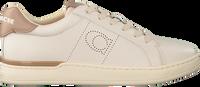 Beige COACH Sneaker low ADB LEATHER-SUEDE LOW TOP  - medium