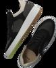 Schwarze NUBIKK Sneaker low JIRO LIMA  - small