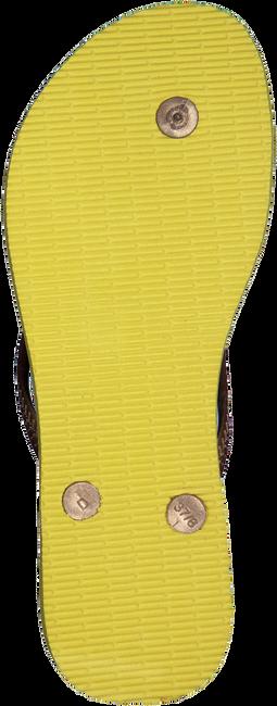 Gelbe HAVAIANAS Zehentrenner SLIM TROPICAL - large