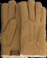 Camelfarbene UGG Handschuhe CONTRAST SHEEPSKIN GLOVE  - medium