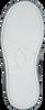 Graue BRAQEEZ Schnürschuhe 418053 - small