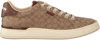 Braune COACH Sneaker low ADB SIG JACQUARD LOW TOP  - medium