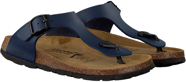 Blue WARMBAT shoe SCHLOBBERG BIO CHAMPION BF  - large