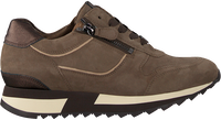 Taupe HASSIA Sneaker low MADRID  - medium