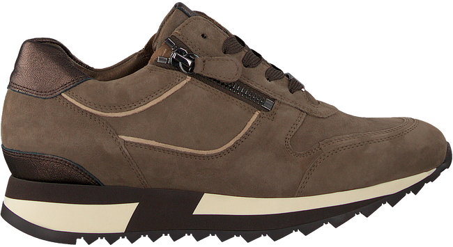 Taupe HASSIA Sneaker low MADRID  - large