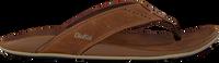 grey OLUKAI shoe NUI  - medium
