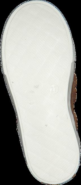 Cognacfarbene PINOCCHIO Sneaker P1186  - large