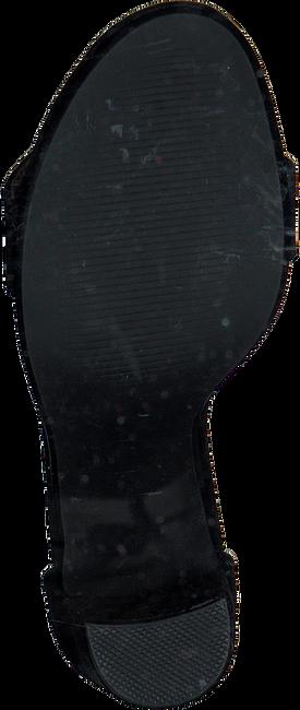 Schwarze STEVE MADDEN Sandalen CARRSON - large