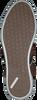 Cognacfarbene BJORN BORG Sneaker COLTRANE NU TRC M - small