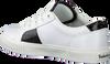 Weiße TIMBERLAND Sneaker low SKYLA BAY OXFORD  - small