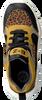 Schwarze BRAQEEZ Sneaker low RENEE RUN  - small
