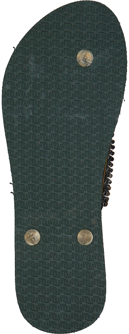 Grüne UZURII Pantolette GOLD FLY - large