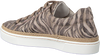 Beige GABOR Sneaker 415 - small