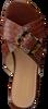 Cognacfarbene SCAPA Pantolette 21/19248CR  - small