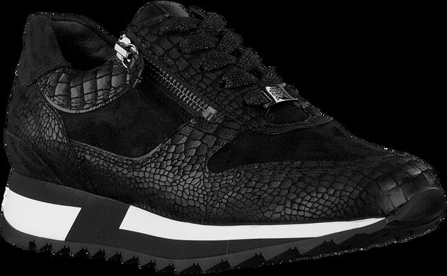 Schwarze HASSIA Sneaker low MADRID  - large