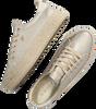 Goldfarbene MEXX Sneaker low CHEVELIJN 05  - small
