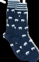 Blaue Alfredo Gonzales Socken BIG STRIPES  - medium