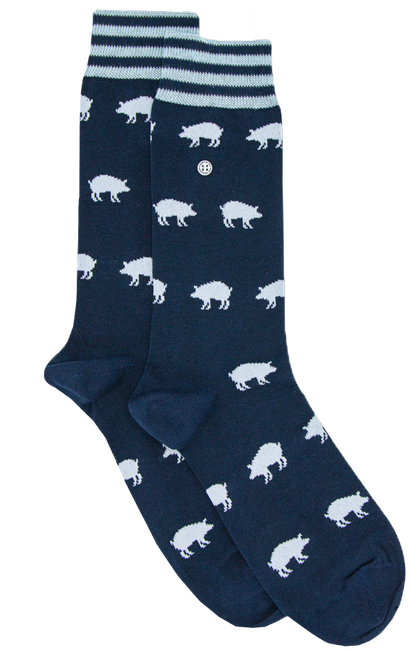 Blaue Alfredo Gonzales Socken BIG STRIPES  - large