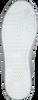 Weiße BJORN BORG Sneaker T307 LOW PRF T  - small
