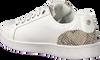 Weiße MEXX Sneaker low EEKE  - small