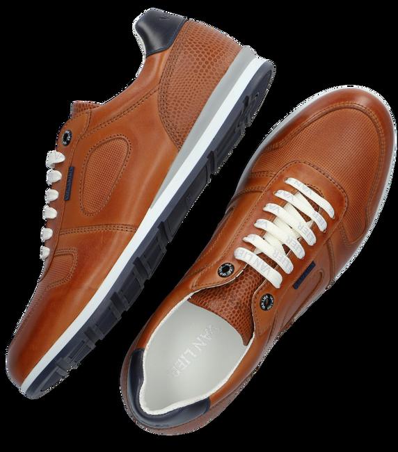 Cognacfarbene VAN LIER Sneaker low DIEGO  - large
