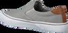 Graue POLO RALPH LAUREN Slip-on Sneaker THOMPSON  - small