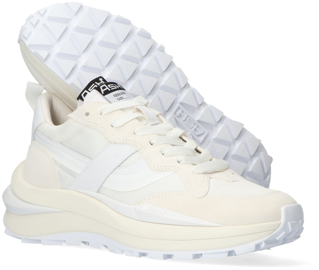 Weiße ASH Sneaker low SPIDER  - large