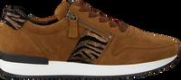 Cognacfarbene GABOR Sneaker low 420  - medium