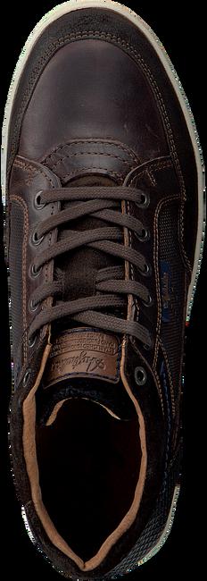 Braune AUSTRALIAN Sneaker ANTRIM - large
