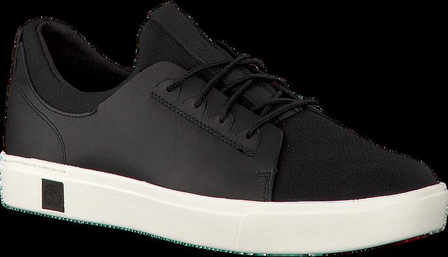Schwarze TIMBERLAND Sneaker AMHERST TRAINER SNEAKER - large